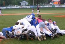 2--6 Baseball Dog Pile