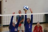 Volleyballplayers