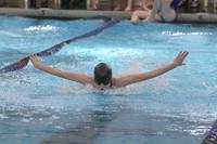 Region swimmer