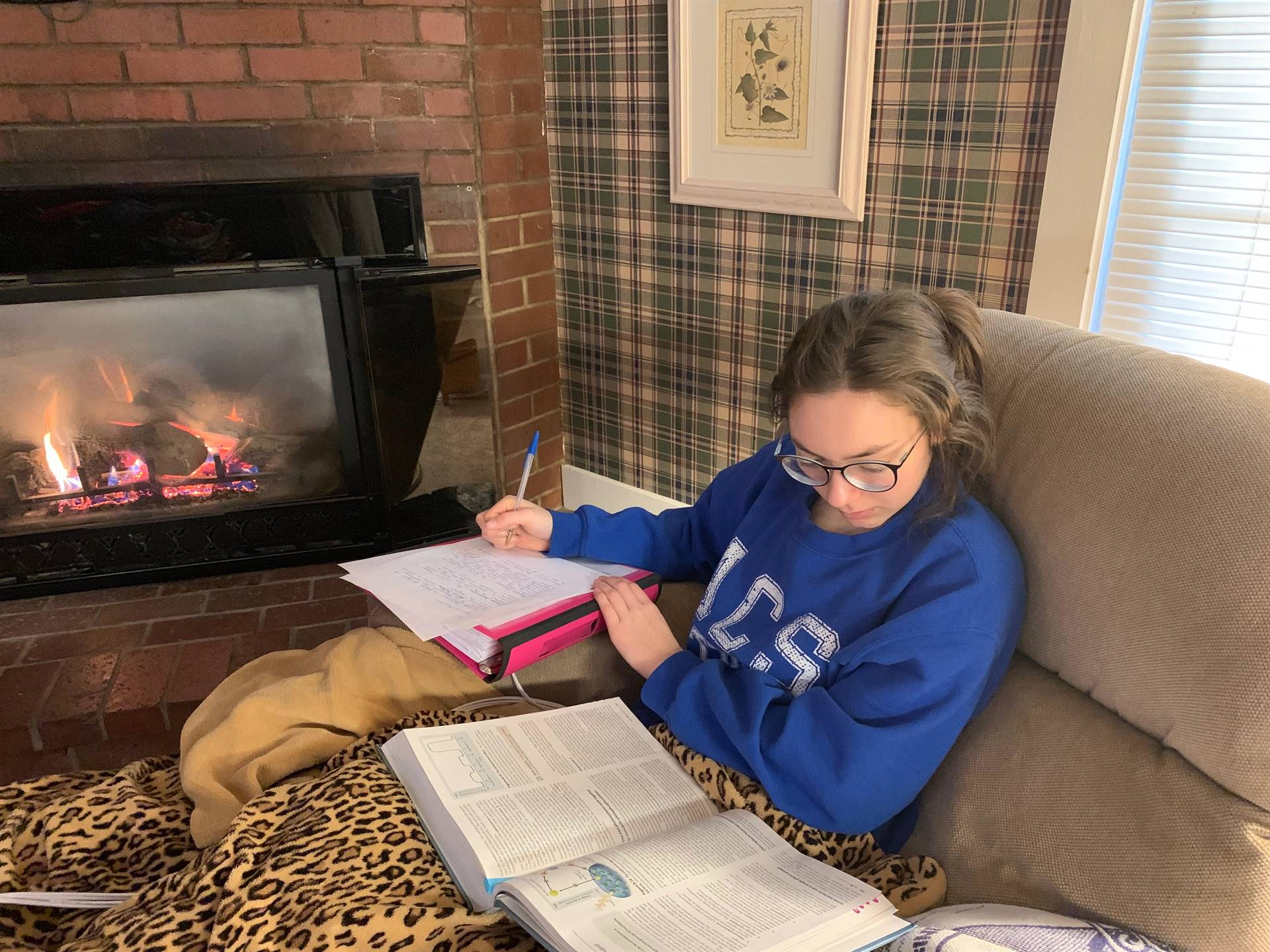 students studying at home