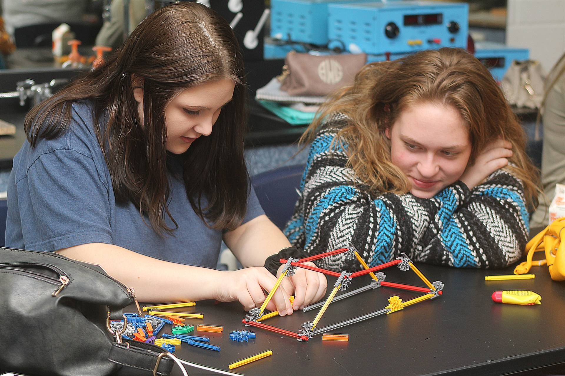 Bridge Building Exercise in Physics